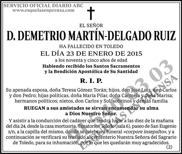 Demetrio Martín-Delgado Ruiz